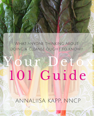 Detox 101 Free Guide cover